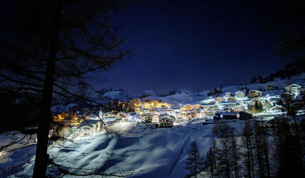 Chamois - Inverno